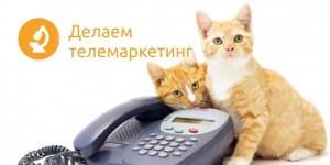 Обзвон по телефону
