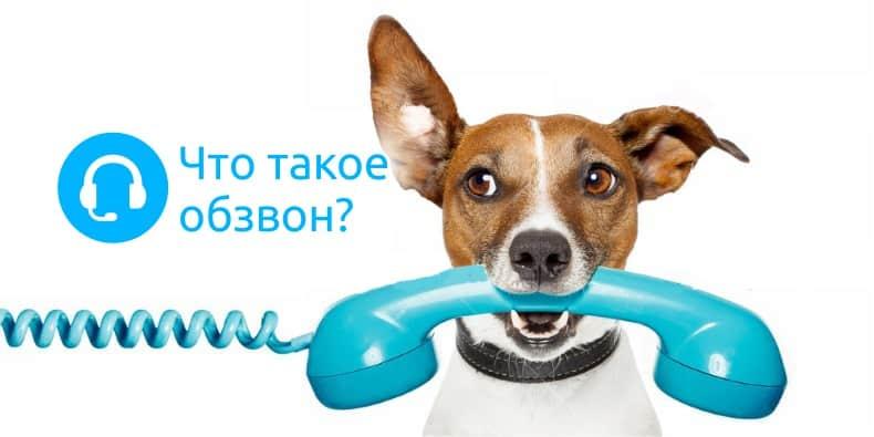 Обзвон клиентов по телефону