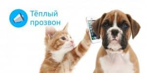 Прозвон клиентов